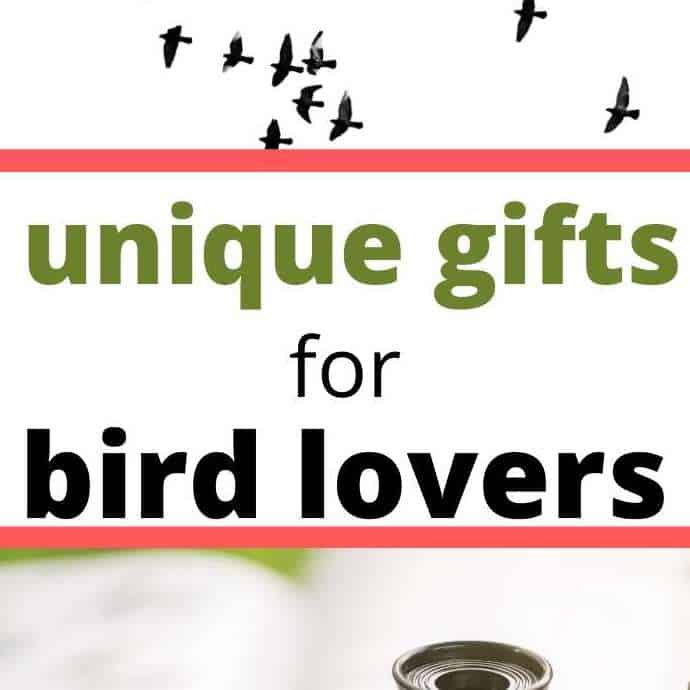27 Unique Gifts For Bird Lovers | 2021 Gift Ideas