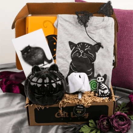 crazy catladybox cratejoy subscription box for cat lovers