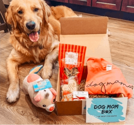 Dog Mom subscription box for dog lovers gifts