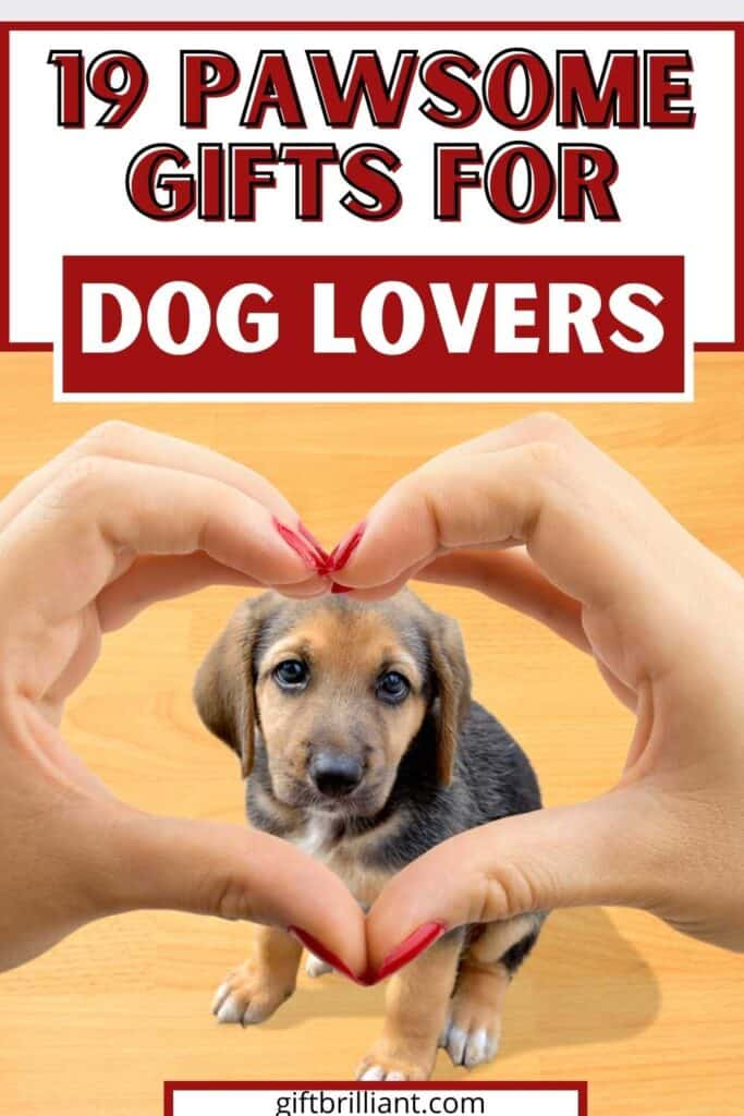 19 Best Gifts for Dog Lovers