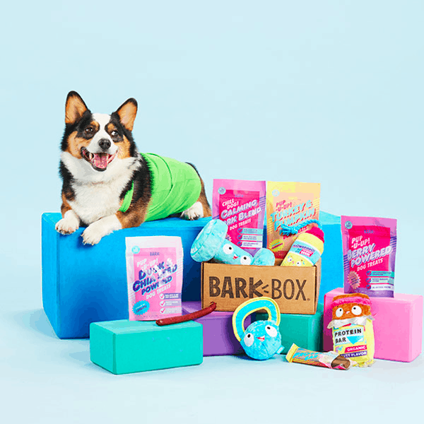barkbox subscription gifts for dog lovers